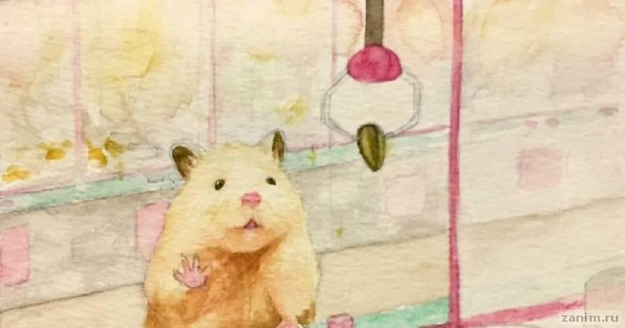 Японский художник нарисовал будни своего хомячка, и на такое грех не залипнуть