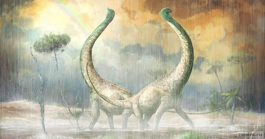 Описан новый вид титанозавров | Журнал Популярная Механика