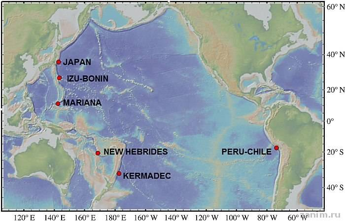 Внутри у самых глубоководных существ нашли пластик