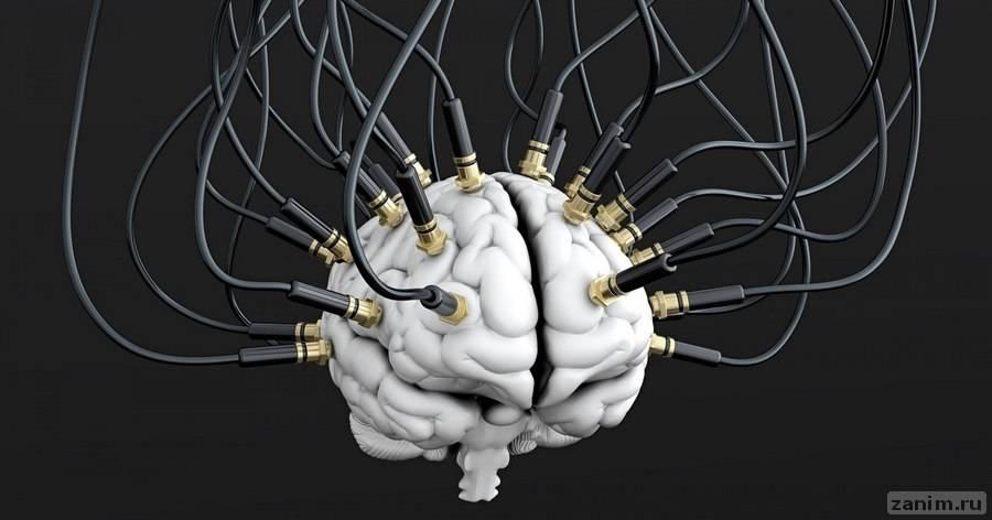 Сон — эффективное лекарство для мозга