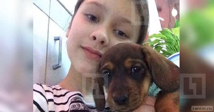 В Новосибирске маленькая девочка пытается найти собаку, которую украли