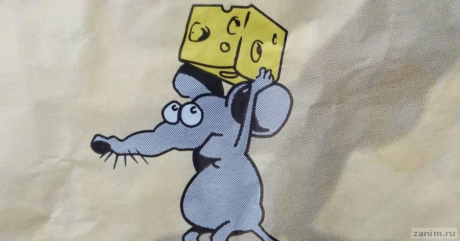 Обсессивно-компульсивная мышь