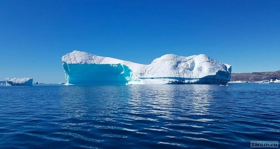Северный Ледовитый океан может пережить безледное лето через 20 лет