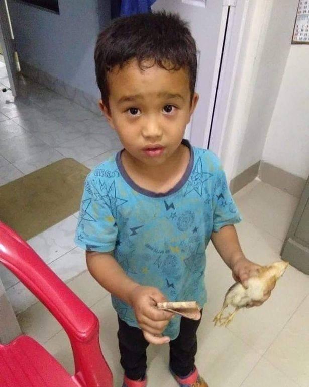 Малыш сбил на велосипеде цыплёнка и отнёс его в больницу, умоляя врачей о помощи