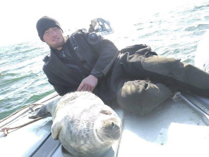Под Калининградом тюленёнок забрался в лодку к ныряльщикам