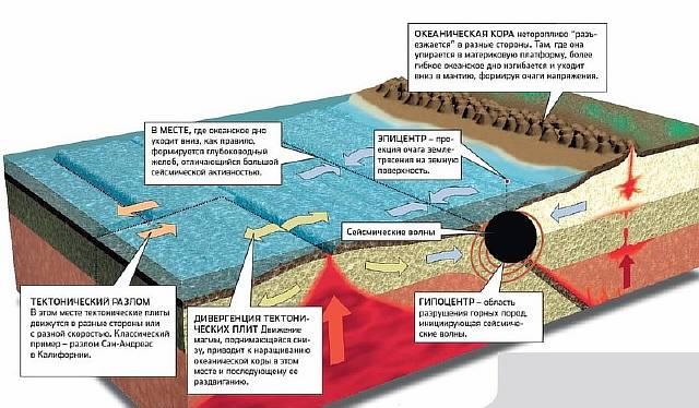 Как предсказать землетрясение
