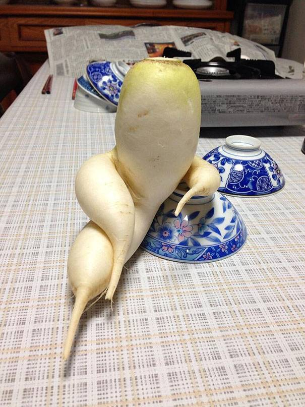 Овощи и фрукты c необычной и курьезной формой